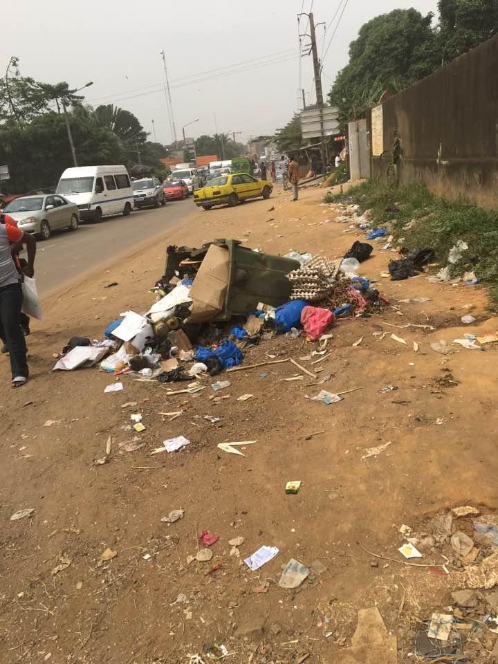 Côte d'Ivoire :2017, année de l'environnement ?