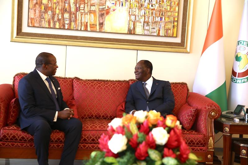 Le Chef de l'Etat a eu un entretien avec le Ministre d'Etat, Conseiller à la Présidence chargé des investissements privés de la République de Guinée