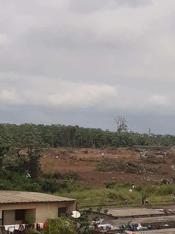 Déforestation en plein Abidjan: Qui a autorisé ce scandale?