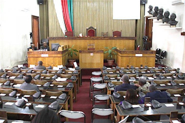 Christine Razanamahasoa et Irmah Naharimamy briguent la présidence de l'Assemblée nationale