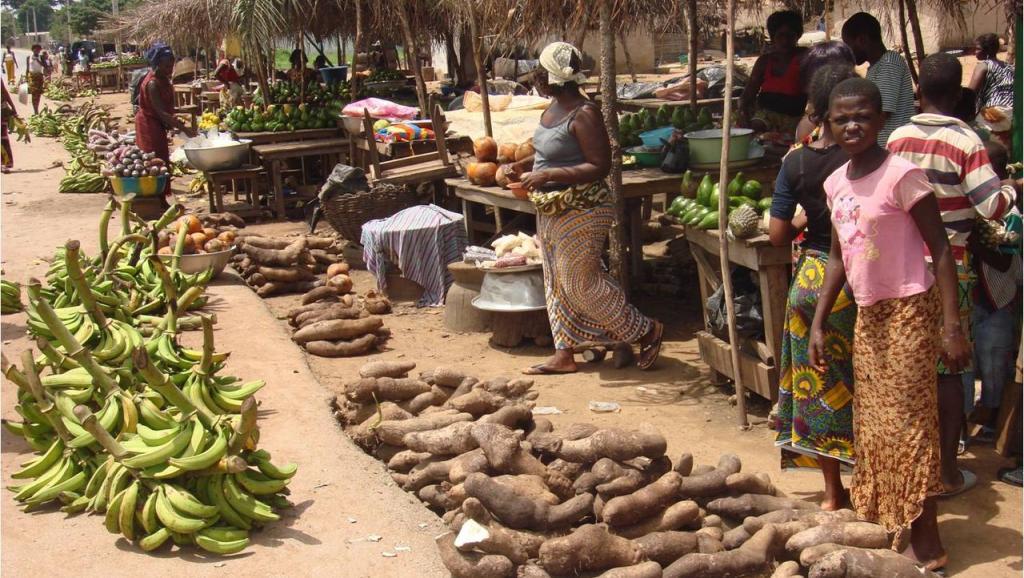 Lutte contre la pauvreté : La Côte d'Ivoire loin derrière le Ghana et le Sénégal