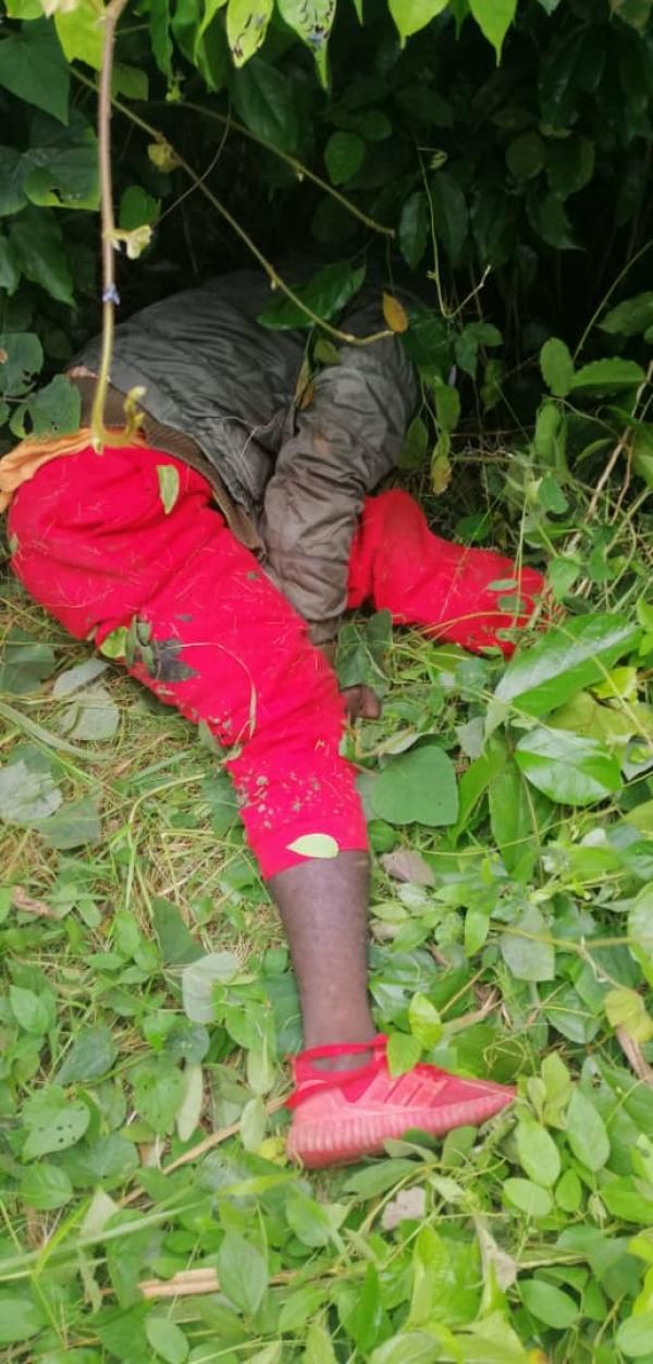 Axe Duekoué-Bangolo: Des coupeurs de route abattent un passager, un policier passager tue un d'entre eux
